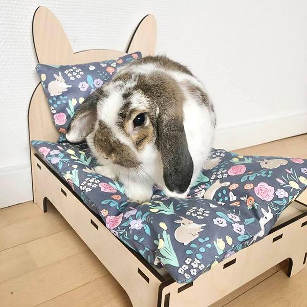 kanin i seng blå