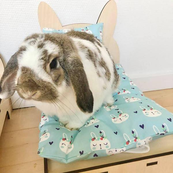 kanin i seng med lyseblå indianere