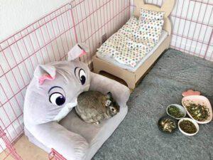 kaninsofa i kanin base